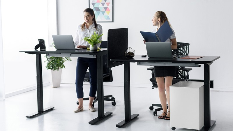 The Standing Desk Frame And More That You need To Know About